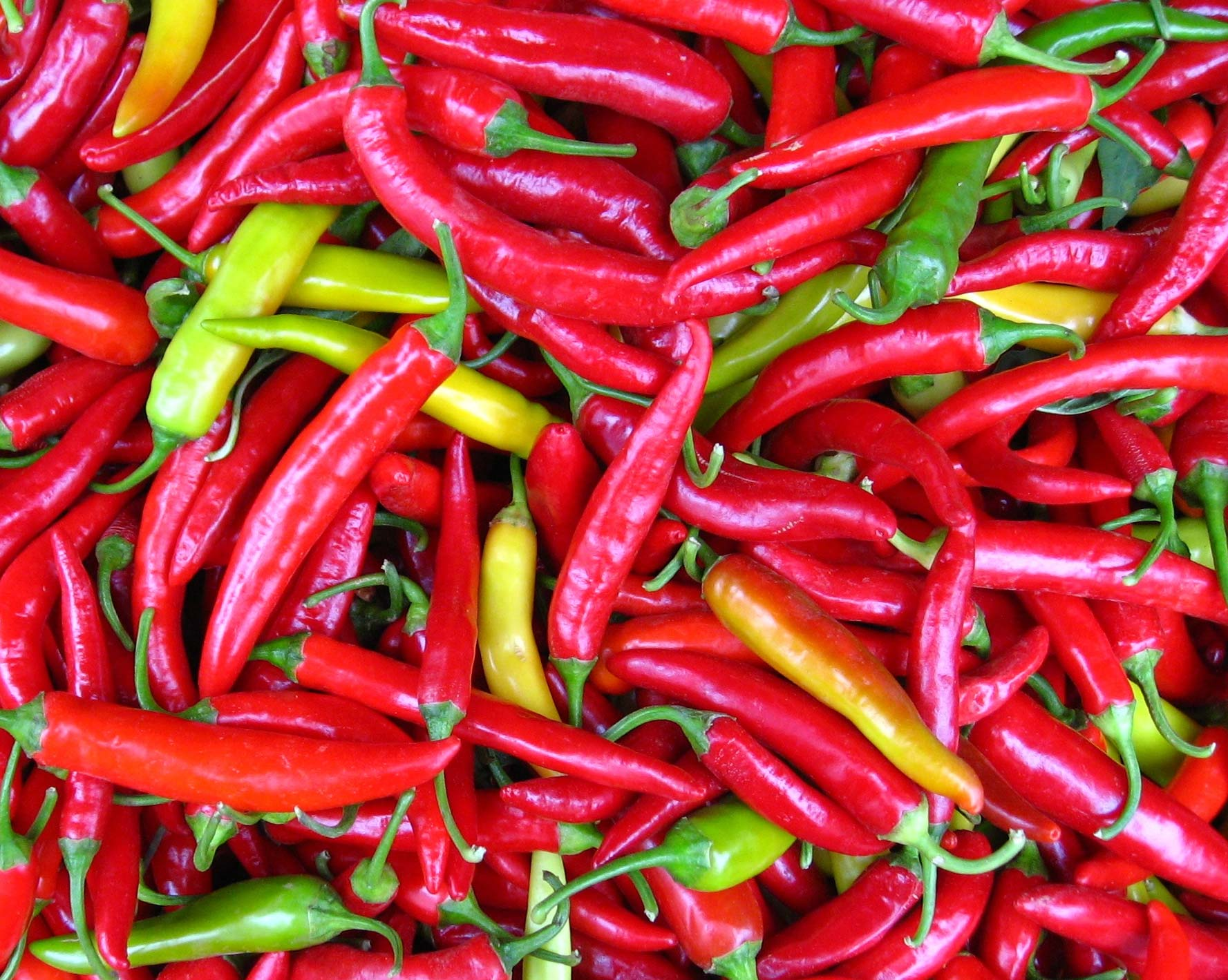 Left for Dead and the Miraculous Cayenne Pepper – Sowing Life