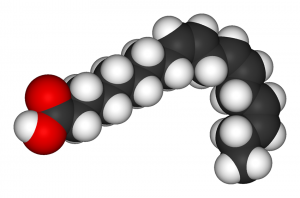 Three-dimensional illustration of alpha-linolenic acid molecule.