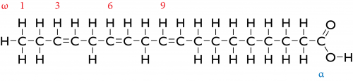 Structural formula of alpha-Linolenic Acid, a triple unsaturated fatty acid.