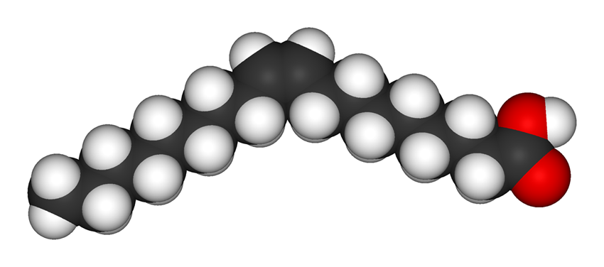 stearidonic acid