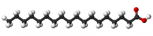 Ball and stick model of stearic acid molecule.
